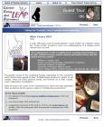 "2003: Website ""NowLeap"" sample 1"
